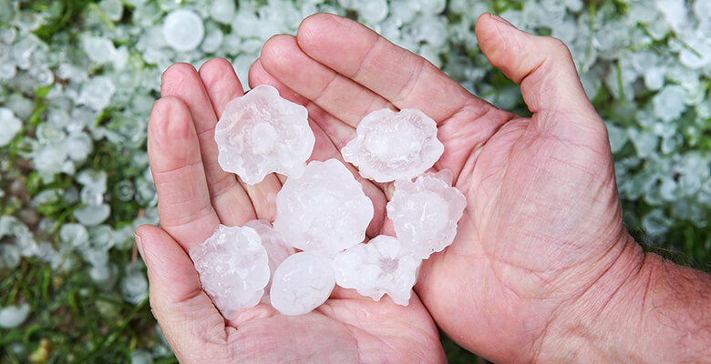 What to Know About Hail Damage to Your Windows and Doors