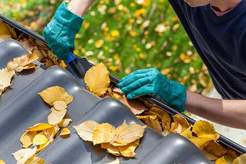 Clean gutters for winter