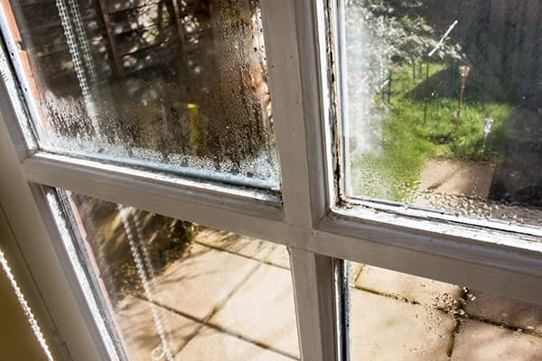 Old windows can date your home