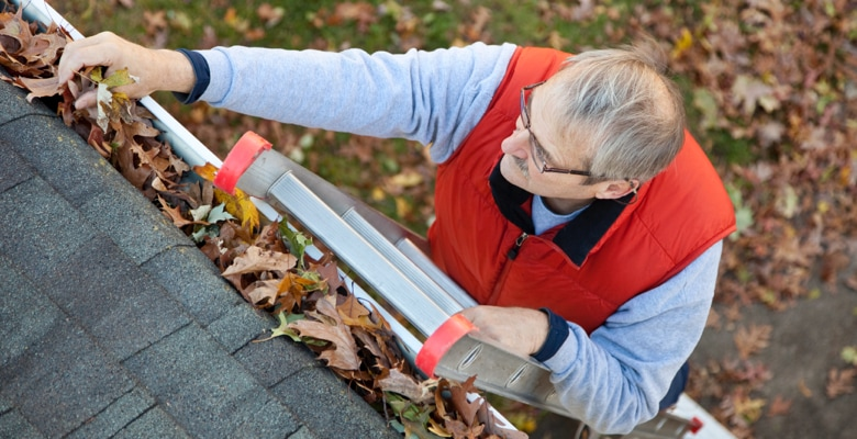 Your Guide to Cleaning Your Windows, Gutters and Downspouts This Spring
