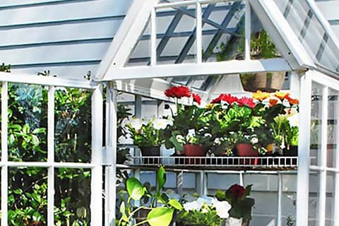 Create a greenhouse from old windows