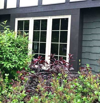 Replacement Windows That Allow Homeowners To Use Their Windows