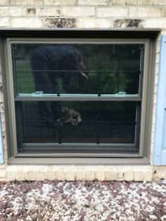 Exterior view of garden-level wood double-hung window with black grilles