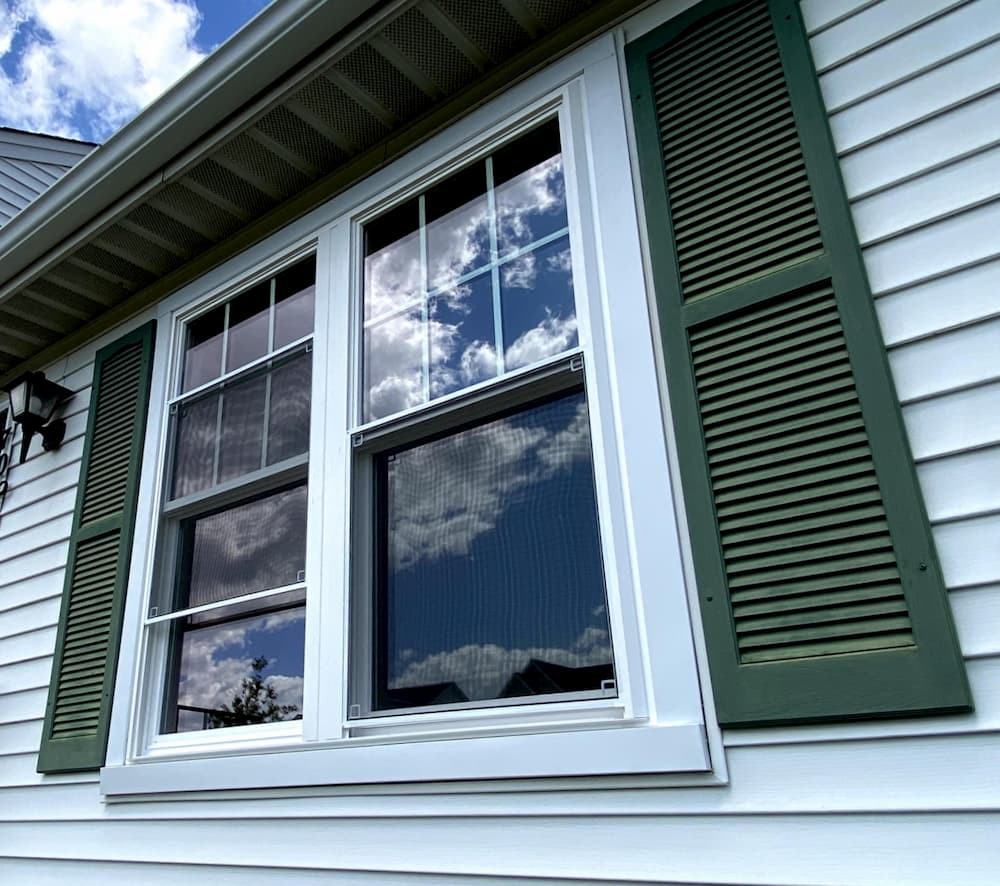 Two side-by-side white double-hung windows framed by green shutters